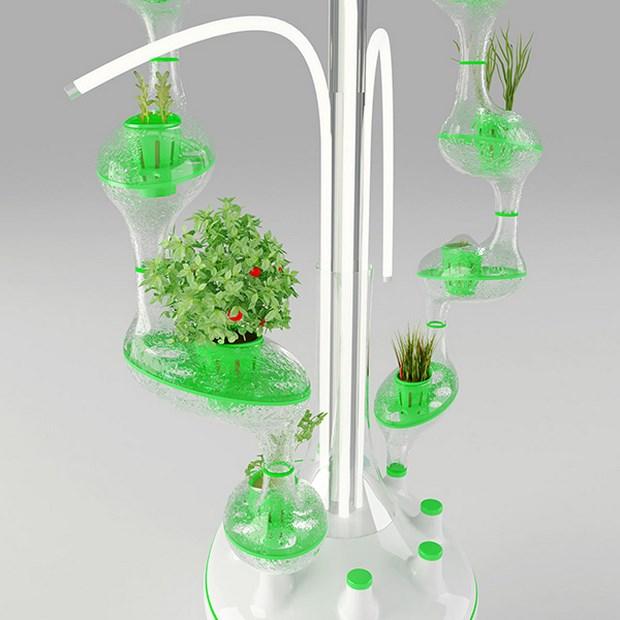 гидропоника дома
