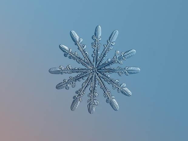 макрофотография снежинки_10