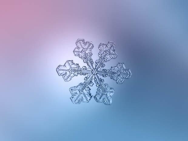 макрофотография снежинки_3