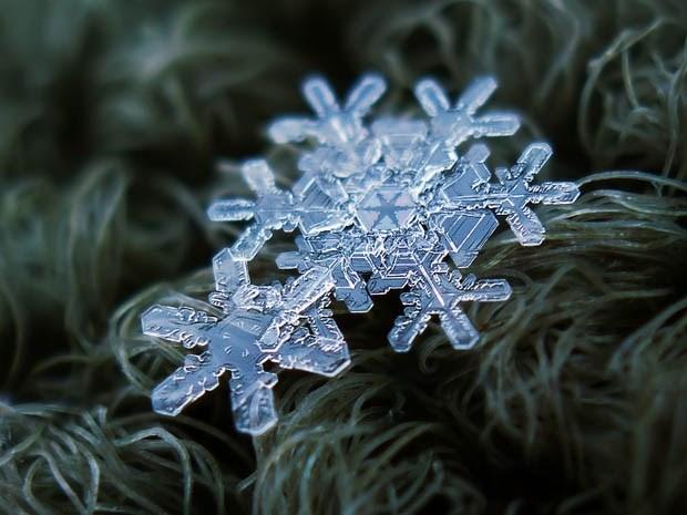 макрофотография снежинки_4