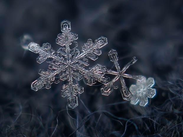 макрофотография снежинки_6