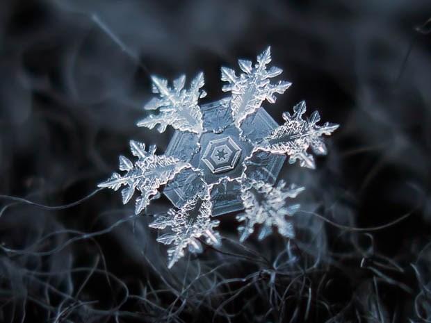 макрофотография снежинки_7