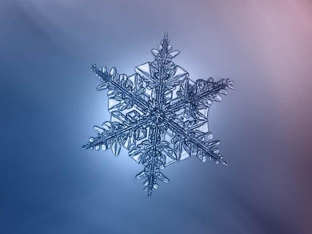 макрофотография снежинки_8