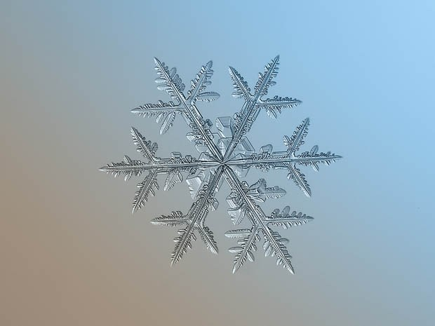 макрофотография снежинки_9