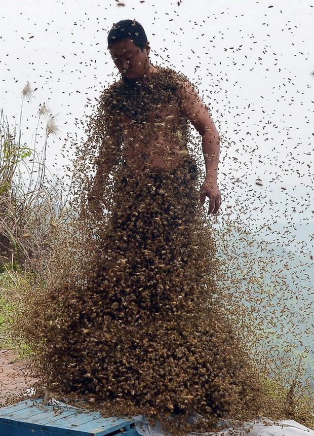 Костюм из пчел She Ping-5
