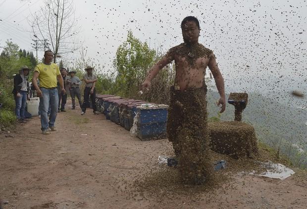 Костюм из пчел She Ping-6