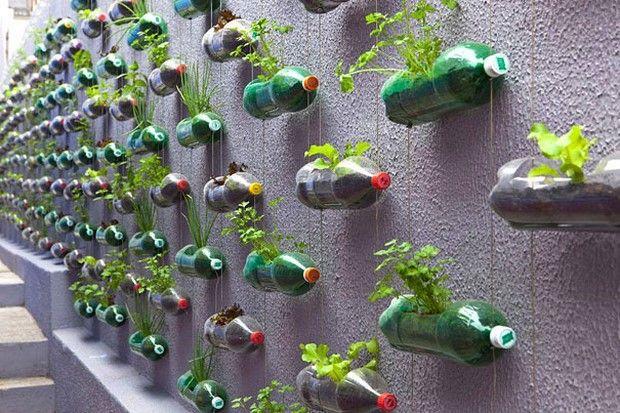 Вторая жизнь пластиковых бутылок-1