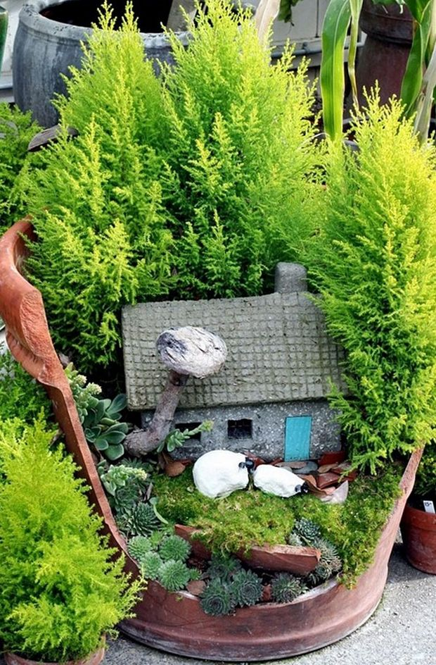 миниатюрный сад-11