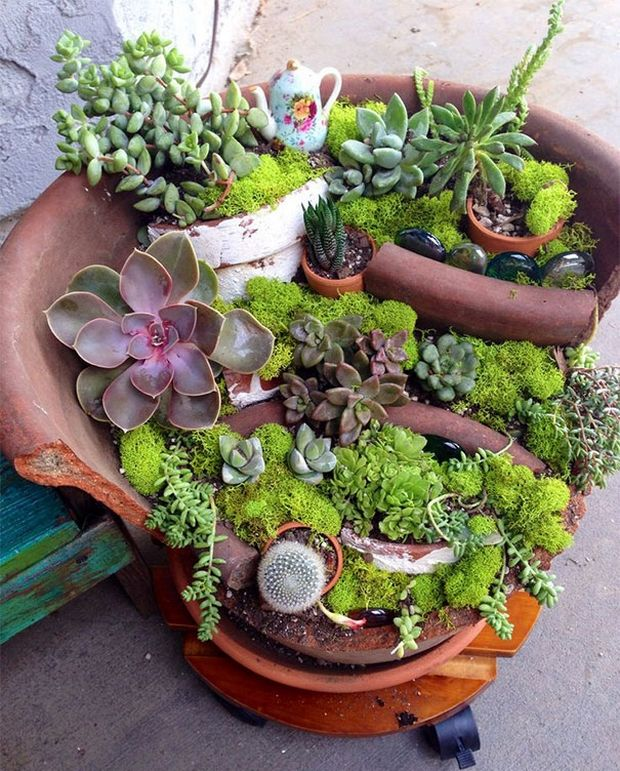 миниатюрный сад-15