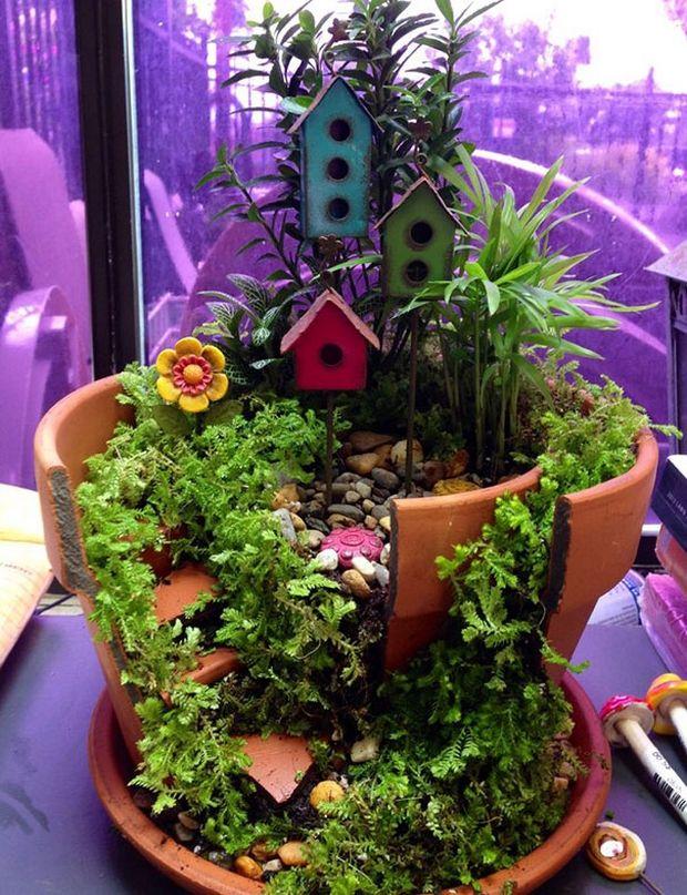 миниатюрный сад-17