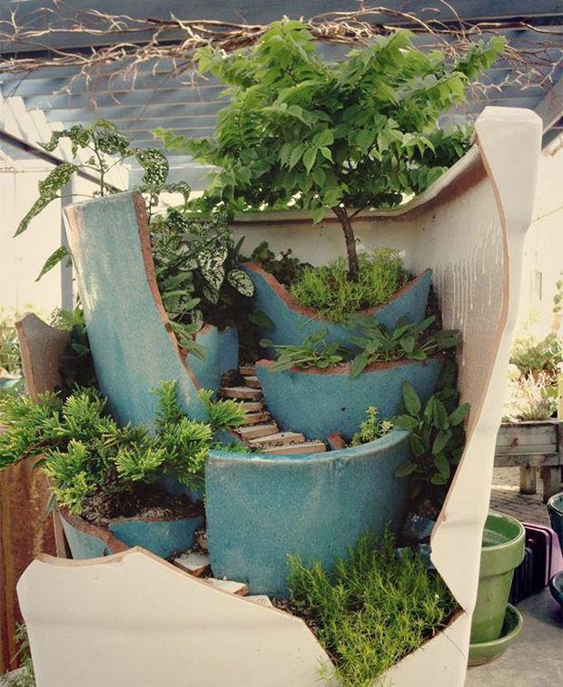 миниатюрный сад-3