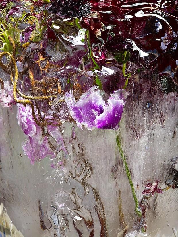 цветы необычной красоты-8