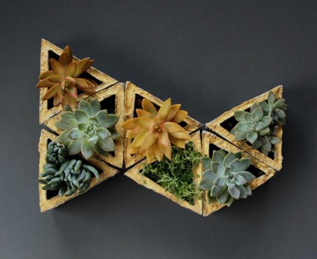 Вертикальные мини сады в квартире-10