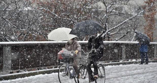Ноябрьский снегопад в Японии