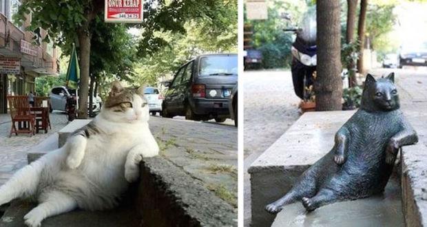 Необычная статуя в честь уличного кота