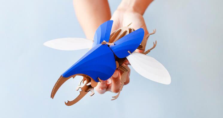 Объёмные модели жуков от Joop Bource
