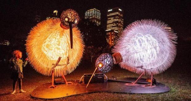 Ежегодный фестиваль Vivid Sydney наполнил улицы города музыкой и красочными световыми инсталляциями