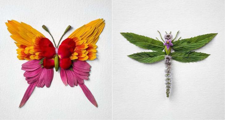 Проект канадского художника Natura Insects – это демонстрация уникального разнообразия живой природы