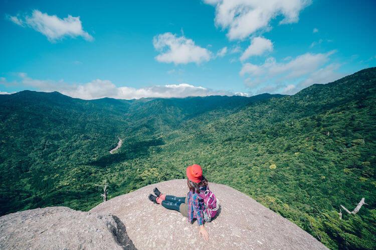 Древние леса острова Якусима в фотографиях Yuichi Yokota